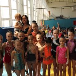 кубок жилиной 2013, чемпионат запорожской области 2013 по художественной гимнастике